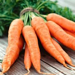 Морковь Флакке /0,5кг GSN/