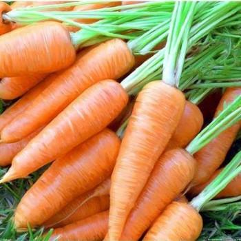Морковь Карлена /0,5кг Satimex/