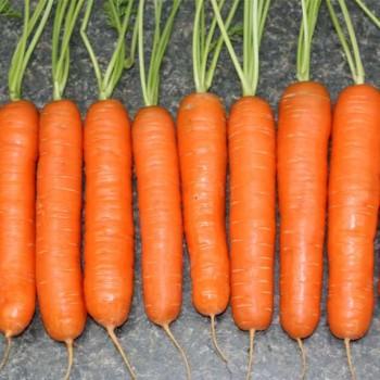 Морковь Натофи /0,5кг Satimex/